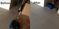 before and after carpet cleaning by Manly Cleaning